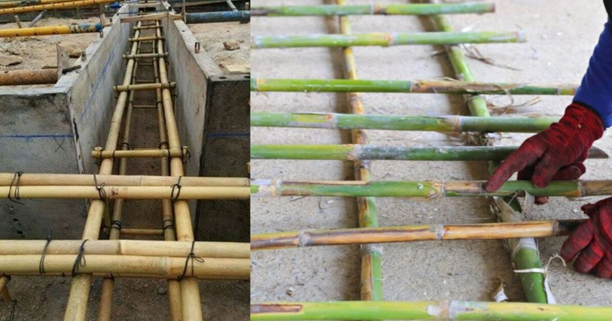 Bamboo For Reinforced Concrete Construction Civil Snapshot
